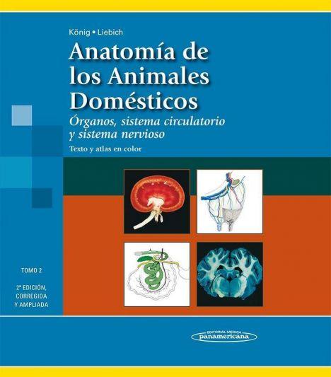 ANATOMIA DE LOS ANIMALES DOMESTICOS TOMO 2 2º ED.
