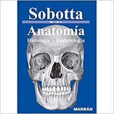 ANATOMIA - HISTOLOGIA - EMBRIOLOGIA - MINI